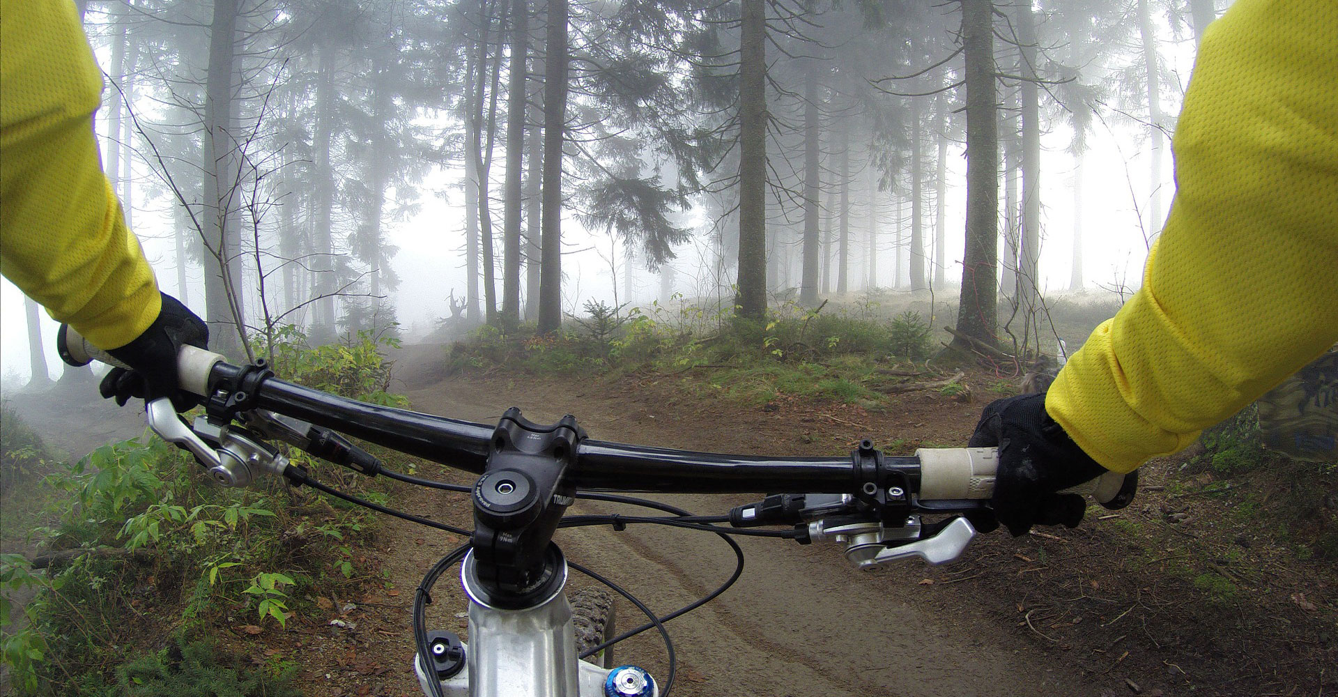 Cycling-Woods