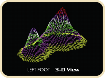 3D Foot View