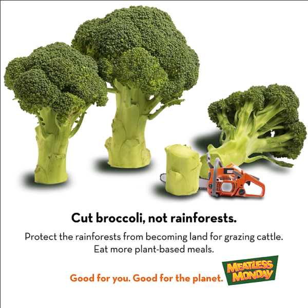 MeatlessMonday-tip-deforestation