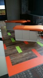 X Ray Area  LVT