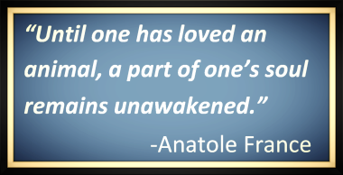 Anatole France in memory of pets