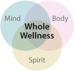 Whole Wellness Infographic