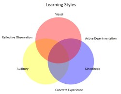 The many different learning styles of employees.