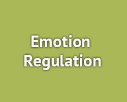 EmotionRegulation_copy