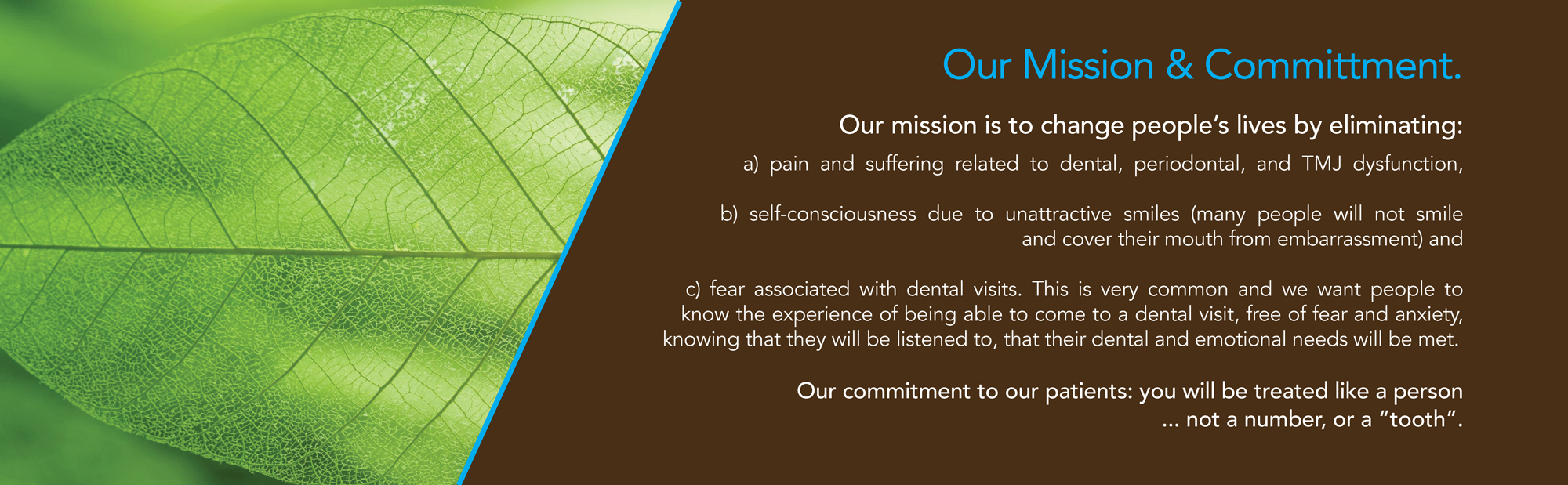 side10_mission-statement-leaf-FINAL_WEB