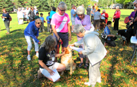 Blessing Of Animals 2015