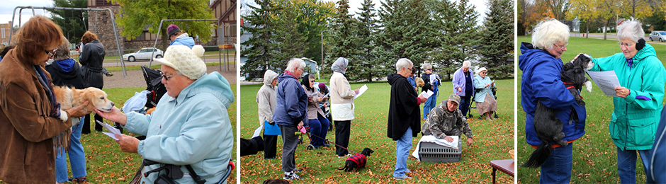 Blessing of Animals 2014