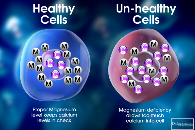 Magnesium_HealthyUnHealthy