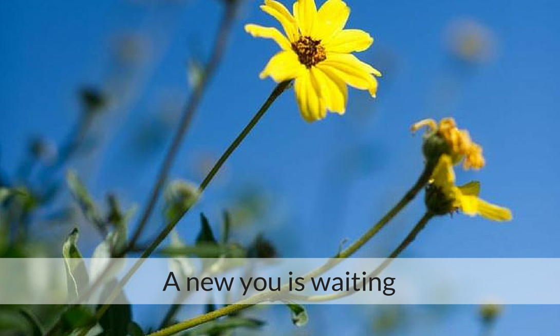 A new you is waiting (1)