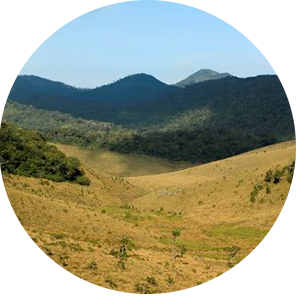 Horton-plains_copy