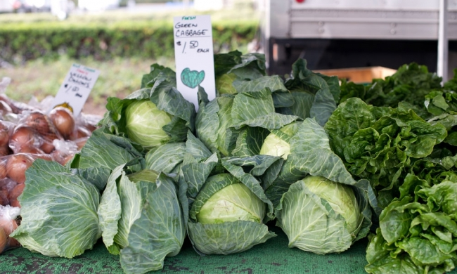 cabbage_farmers_market_1_21