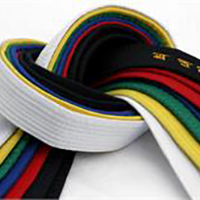 TAGB Coloured Belt Grading