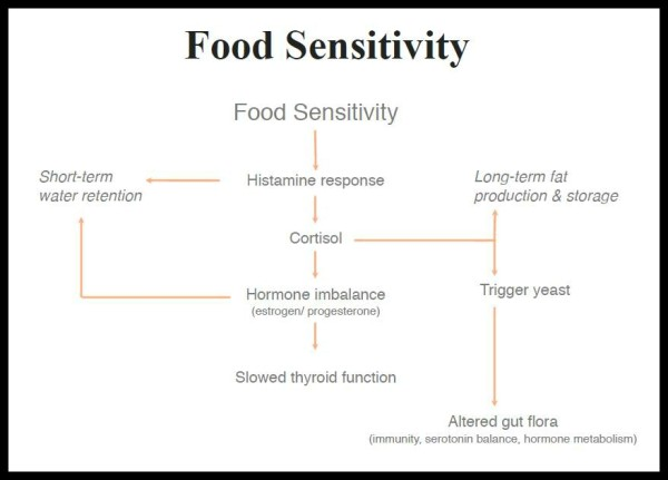The-Plan-Food-Sensitivity-e1374862023544