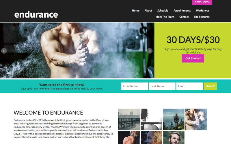 Endurance Template from LiveEdit