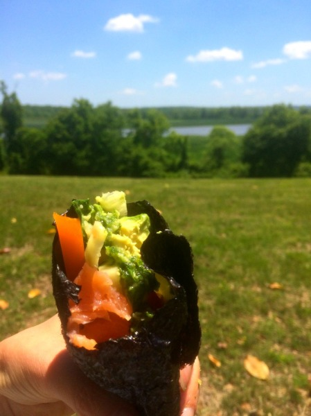 nori salmon wrap view_copy1