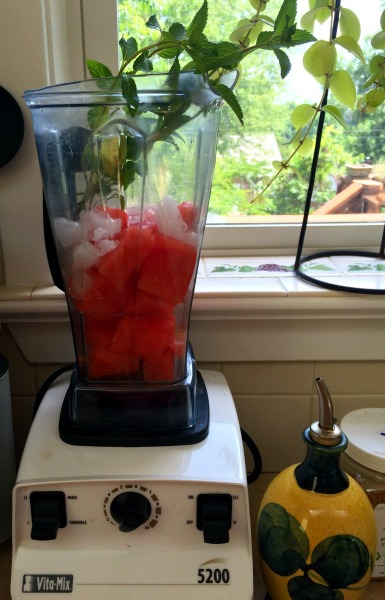 watermelon cooler vitamix