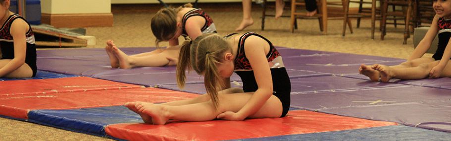 St. Francis Music Center Gymnastics