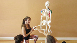 Anatomy for Yoga Workshop