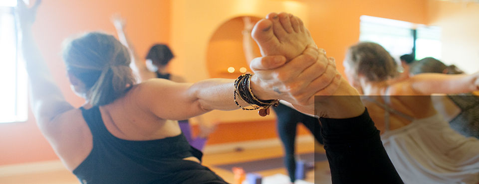Shakti Yoga Teacher Training