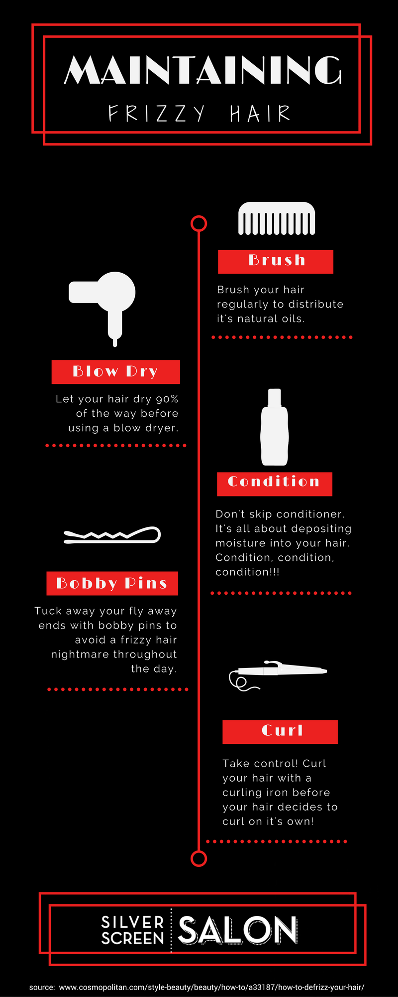 frizzy hair infographic (1)