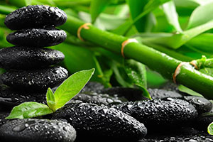 Sticks & Stones Massage at The Muscle Therapy Center