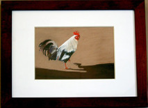 Faythe-Mills-rooster
