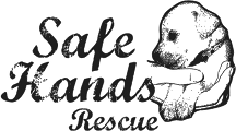 safe-hands-logo-small_copy