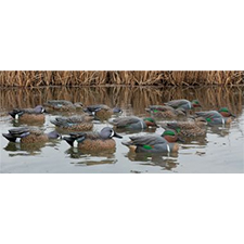 AVIAN-X TOPFLIGHT GREEN WINGED TEAL