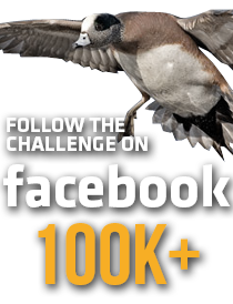 UWC_FB_Graphic_100k