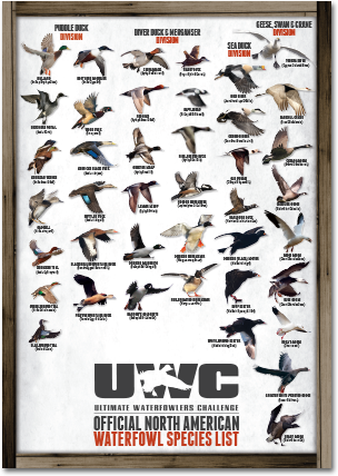 UWC_Species_Poster_Thumb