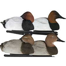 canvasback_hunting