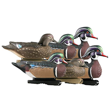 wood_duck_hunting
