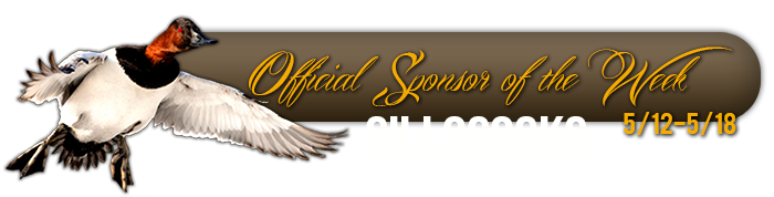 official_sponsor_of_the_week_sillosocks