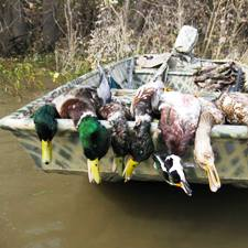 minnesota-guided-duck-hunts