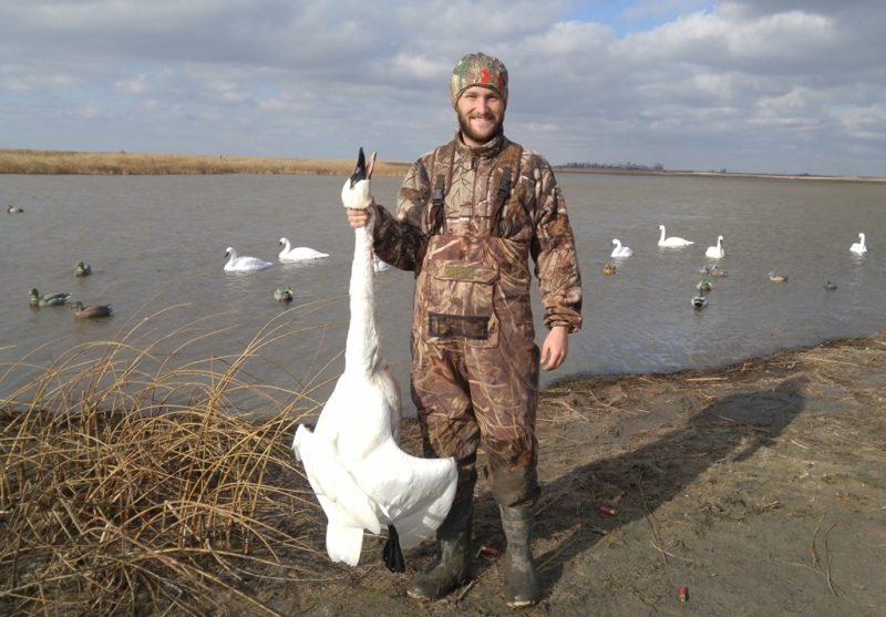 Swan hunting guides uwc adventures testimonials publicscrutiny Gallery