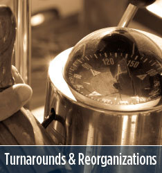 GuideSource - Turnarounds and Reorganizations