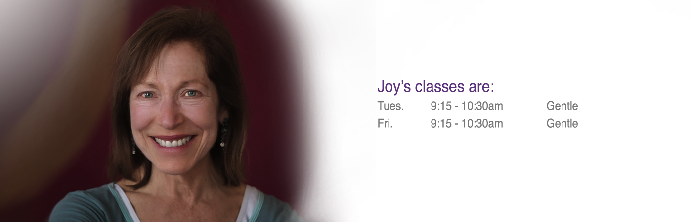 Joy Portrait 2016 banner