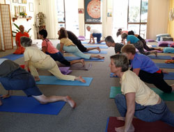 Sunshine Coast Yoga