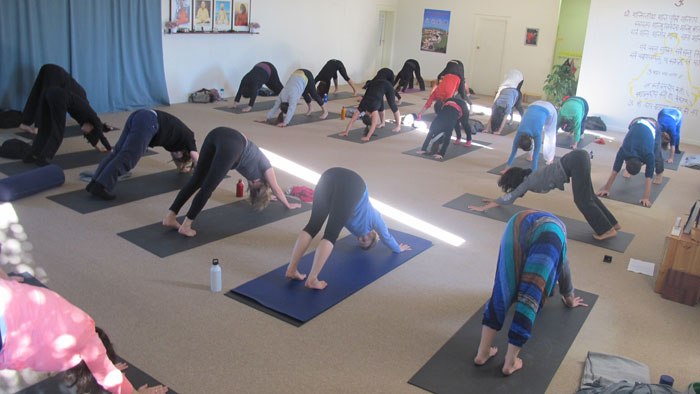 Yoga in Dailu Life Melbourne