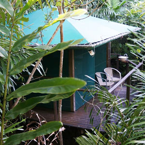 SR-Rainforest-Hut-outside