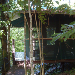 Rainforest Hut: Yoga in Daily Life Retreat